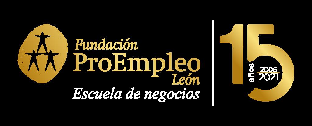 15 años logo